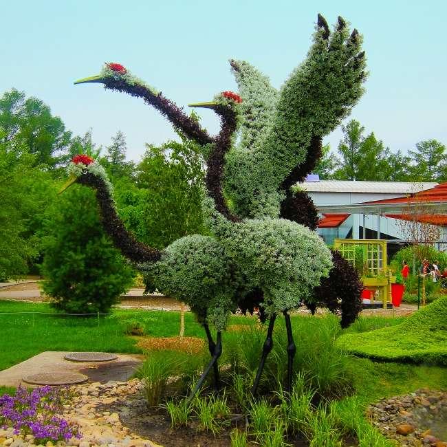 В ботаническом саду Монреаля открылся фестиваль цветов.